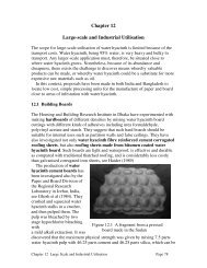 Chapter 12 Large-scale and Industrial Utilisation - Anamed