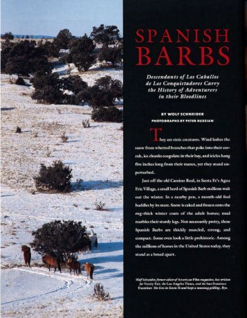 Spanish Barbs - El Palacio Magazine