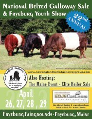 NAtioNAl Belted GAllowAY SAle the MAiNe eveNt - US Belted ...