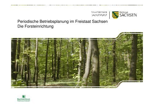 Periodische Betriebsplanung im Freistaat Sachsen Die ...