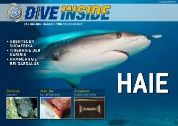 Web-Version (9.5 MB) - DiveInside