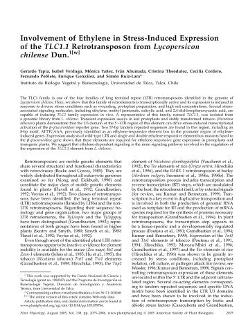 Involvement of Ethylene in Stress-Induced ... - Plant Physiology