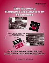 The Growing Hispanic Population in Tennessee - UT Extension ...