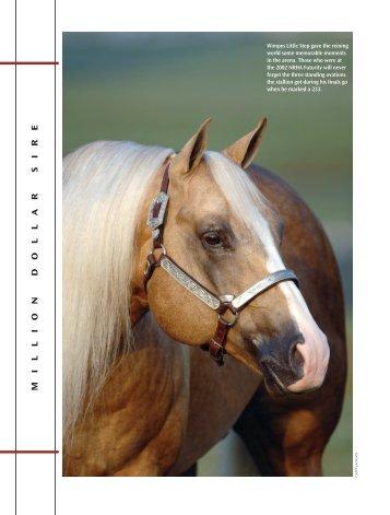 M I L L I O N D O L L A R S I R E - Xtra Quarter Horses