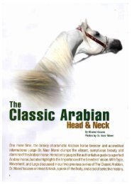 Classic Arabian - Horse Times