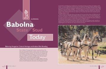 State Stud - Bailey Arabians