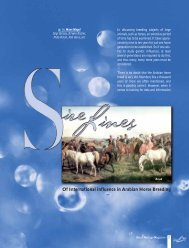 n.10 - Sires Lines - Desert Heritage Magazine