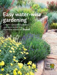 Easy water-wise gardening - Save Our Water