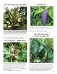 Riverbanks Volume XXVIII, Number 3 - Riverbanks Zoo and Garden - Page 5