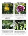 Riverbanks Volume XXVIII, Number 3 - Riverbanks Zoo and Garden - Page 6