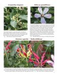 Riverbanks Volume XXVIII, Number 3 - Riverbanks Zoo and Garden - Page 7