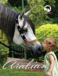 HORSE GUIDEBOOK - The United States Equestrian Federation