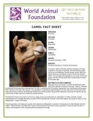 CAMEL FACT SHEET - World Animal Foundation