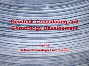 Geoduck Crossdating and Chronology Development
