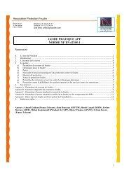guide pratique apf norme nf en 62305-1 - Association Protection ...
