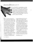 Anatomical Homology (pdf, 1.03MB) - Intranet - Page 2