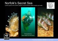 Norfolk's Secret Sea - the North Sea Wildlife Project