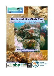 Seasearch East – North Norfolk's Chalk Reef - Norfolk Wildlife Trust