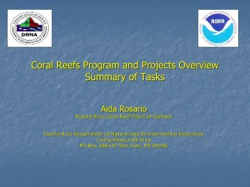 Coral Reef Conservation: Challenges and Solutions in Puerto