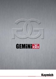 GEMINI Twin and Single track Flavouring System Brochure - Kaymich