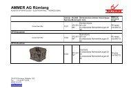 AMMER AG Rümlang - polyverix.ch