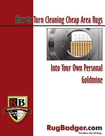 How to Turn Cleaning Cheap Area Rugs Into Your ... - RugBadger