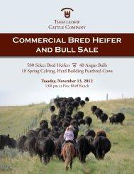 Commercial Bred Heifer and Bull Sale - The Cattle Range