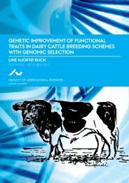 Genetic improvement of functional traits in dairy cattle