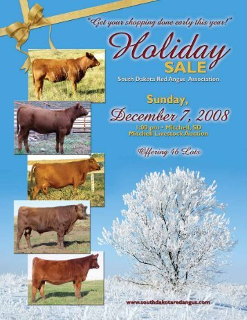 Namken Red Angus .......................................... 23, Steer - Cow Camp ...