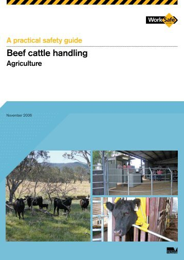 Beef Cattle Handling: A Practical Safety Guide - WorkSafe Victoria