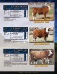 Bred Fleckvieh Heifers - Fullblood Simmental Fleckvieh Federation - Page 3