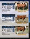 Bred Fleckvieh Heifers - Fullblood Simmental Fleckvieh Federation - Page 5