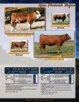 Bred Fleckvieh Heifers - Fullblood Simmental Fleckvieh Federation - Page 7