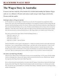 The Wagyu Story in Australia: - German Wagyu Academy