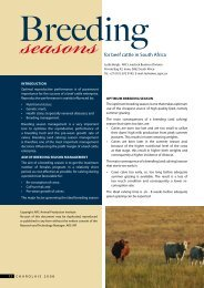 seasonsfor beef cattle in South Africa