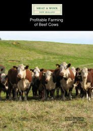 Profitable Farming of Beef Cows - Beef + Lamb New Zealand