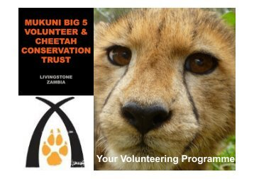 Your Volunteering Programme - Mukuni Big 5