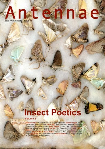 Insect Poetics - Antennae The Journal of Nature in Visual Culture
