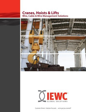Cranes, Hoists & Lifts - IEWC