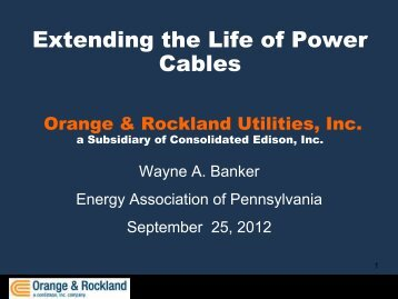 Extending the Life of Power Cables - Energy Association of ...