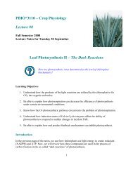 PBIO*3110 – Crop Physiology Lecture #8 Leaf Photosynthesis II ...