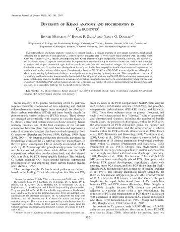 diversity of kranz anatomy and biochemistry in c4 eudicots
