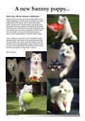 Sleigh Courier Spring 2012 (pdf 5.8MB) - The Samoyed Club ... - Page 6