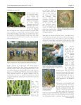 Tallahassee to Fakahatchee - Long Island Botanical Society - Page 3