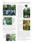 Tallahassee to Fakahatchee - Long Island Botanical Society - Page 4