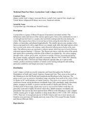 Medicinal Plant Fact Sheet: Cypripedium: Lady's slipper orchids