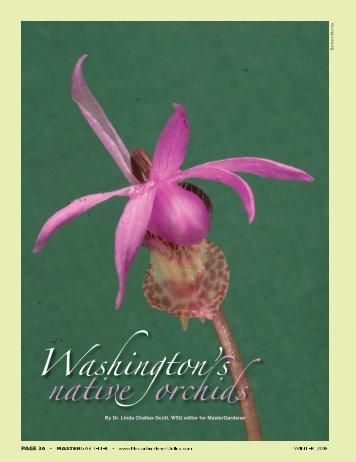 Washington's native orchids - Washington Native Orchid Society
