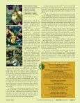 Washington's native orchids - Washington Native Orchid Society - Page 6