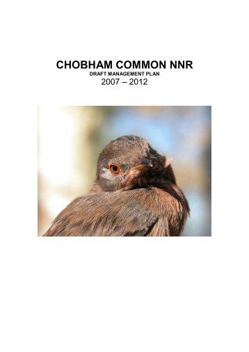 CHOBHAM COMMON NNR - Surrey Wildlife Trust