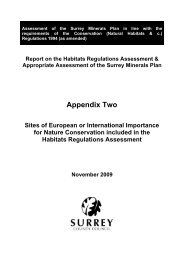 HRA Appendix 2 - Surrey County Council